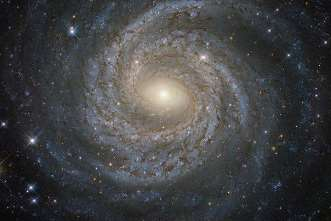 forta Univers
