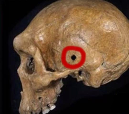 neanderthal-impuscat