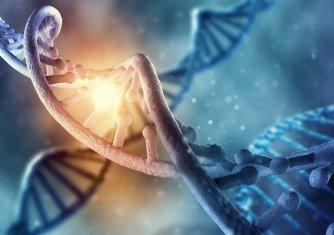 Aproape jumătate din ceea ce se află în interiorul cromozomului rămâne un mister pentru oamenii de ştiinţă, chiar cu tehnologiile avansate de care dispunem
