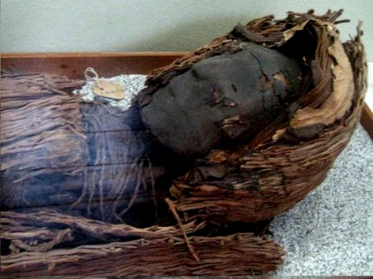 mumie-chinchorro