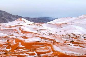 ninge-in-sahara