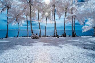 ninge-la-tropice
