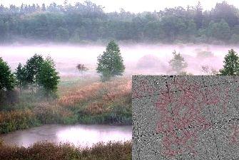 Tehnologia LIDAR a descoperit ceva misterios într-o pădure din Polonia! În pădurea Baciu de lângă Cluj ce-ar putea fi găsit cu ajutorul aceleiaşi tehnologii?