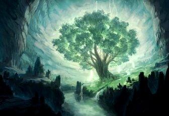 """""""Copacul celor zece mii de imagini"""" din Tibet - un copac magic, ce nu poate fi explicat ştiinţific"""