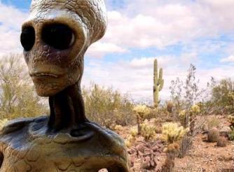 """Imaginea secretă a unui aşa-zis extraterestru a fost postată pe un forum, dar apoi a fost ştearsă! Unii utilizatori s-au simţit rău după ce-au văzut imaginea """"extraterestrului""""..."""