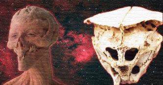 Şocantul craniu Rodopi din Bulgaria - paleontologii n-au mai întâlnit aşa ceva vreodată! Dacă aparţine vreunui extraterestru, aşa ciudat arată!?