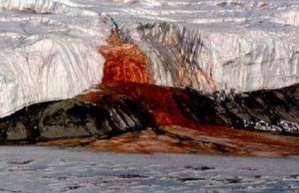 """""""Cascada sângelui"""" din Antarctica are un mister care a fost până la urmă rezolvat"""