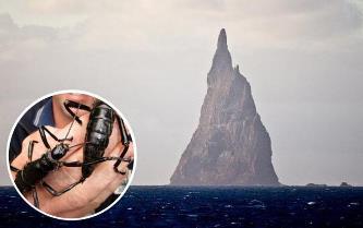 """E greu de crezut ce se ascunde pe o insulă ciudată de lângă Australia - """"Piramida lui Ball"""""""