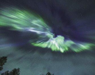 Ce poate fi această fotografie? O auroră polară ce ia forma unei păsări imense!