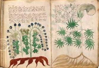 O nouă ipoteză despre incredibilul şi misteriosul Manuscris Voynich