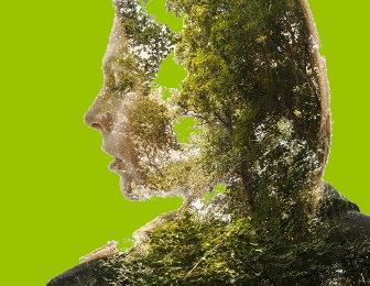 Cine trăieşte lângă copaci sau lângă o pădure are parte de beneficii incredibile la nivelul creierului