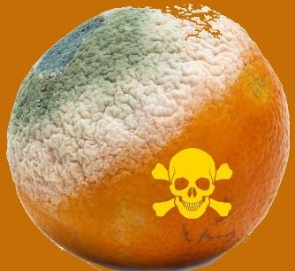 Oficialii avertizează că unele citrice de la supermarketuri conţin o substanţă cancerigenă care atacă ficatul şi rinichii