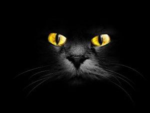 Ce chipuri poate lua diavolul? Experienţe oculte ale mai multor sfinţi