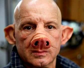 Experiment periculos: cercetătorii au creat primul embrion om-porc... Bine aţi venit în lumea hibrizilor!