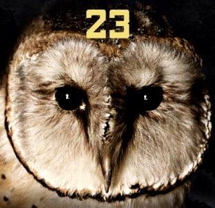 Enigma numărului 23: aduce ghinion acest număr?