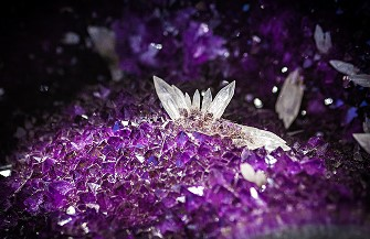 Cristalele nu pot face rău niciodată, ci dimpotrivă! Ele nu trădează niciodată şi nu cer niciodată nimic!