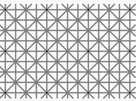 """""""Iluzia dispariţiei a lui Ninio"""" - nu puteţi vedea 12 puncte simultan"""