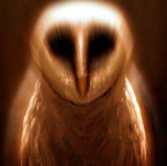 Bufniţa e folosit ca simbol atât de extratereştri (demoni) cât şi de organizaţiile oculte de pe Terra