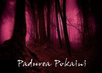 O, Dumnezeule, ce se întâmplă în pădurea Pokaini din Letonia? Ceasurile se blochează, nu se mai aud sunete, apar globuri de lumină...
