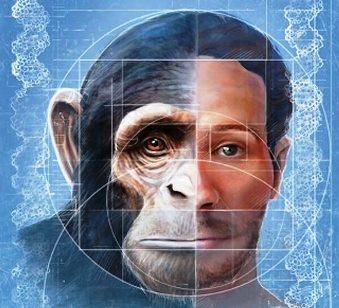 Cercetătorii au creat primul hibrid om-maimuță! Bine aţi venit în lumea hibrizilor!