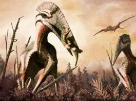 Rămăşiţele unei reptile zburătoare au fost descoperite în Transilvania