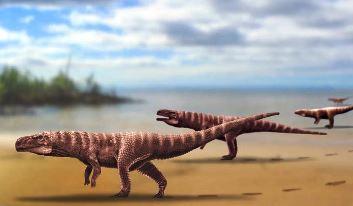 Crocodil pe două picioare? Iată ce-au descoperit paleontologii...