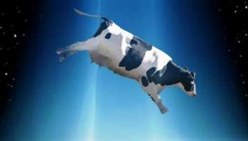 """Un fermier din Canada susţine că 250 din vitele sale au fost omorâte de o """"rază extraterestră a morţii"""""""