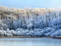 """În luna august, în regiunea Moscovei se înregistrează temperaturi de îngheţ... Un alt semn al """"încălzirii globale""""?"""