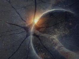"""O teorie """"nebună"""" a unui cercetător: Universul este o gigantică reţea neurală! Asta înseamnă că noi trăim în creierul unei """"fiinţe""""?"""