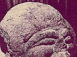 O străveche sculptură misterioasă găsită pe malul Oltului prezintă un cosmonaut extraterestru?