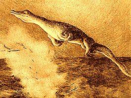 Au văzut militarii germani în Oceanul Atlantic un Tylozaur (adică un monstru marin gigantic, ce a dispărut în urmă cu 160 de milioane de ani)?