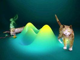 Ştiinţa acum recunoaşte posibilitatea existenţei obiectelor mari şi/ fiinţelor vii în mai multe locaţii, simultan! Fizica cuantică este încă misterioasă...