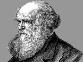 """Care era """"misterul înfiorător"""" al faimosului naturalist Charles Darwin? Şi de ce, şi astăzi, oamenii de ştiinţă n-au niciun răspuns?"""