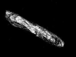 Un profesor celebru de la Harvard ne spune clar că acum 4 ani ne-a vizitat o sondă spaţială extraterestră! V-am spus eu că 2021 va fi anul dezvăluirilor-bombă...