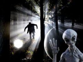 """""""Teoria pădurii întunecate"""" - o explicaţie terifiantă pentru care oamenii nu s-au întâlnit, în mod oficial, cu extratereştrii"""
