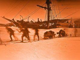 """Indigenii māori din Noua Zeelandă au vizitat Antarctica cu peste 1.000 de ani înainte de """"descoperirea oficială"""" din 1820 - spune un nou studiu ştiinţific"""