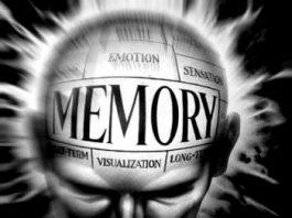 În 1962, cercetătorii erau aproape de a implementa oamenilor o memorie artificială! Cunoştinţele ar fi putut fi injectate... Ce s-a întâmplat de atunci?