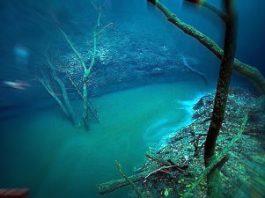 """""""Cenote Angelita"""" - un fabulos râu submarin """"secret"""", aflat pe fundul Golfului Mexic"""