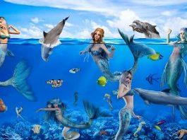 Chiar există sirenele, aceste creaturi magice ale mărilor şi oceanelor? Faimosul explorator Cristofor Columb se pare că a văzut 3 sirene!